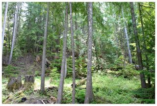 Photo 10: Lot 9 Kali Bay in Eagle Bay: Kali Bay House for sale (Shuswap Lake)  : MLS®# 10125666