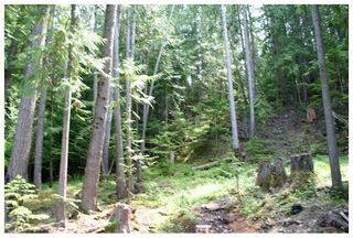 Photo 11: Lot 9 Kali Bay in Eagle Bay: Kali Bay House for sale (Shuswap Lake)  : MLS®# 10125666