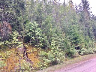Photo 17: 3,4,6 Armstrong Road in Eagle Bay: Vacant Land for sale : MLS®# 10133907