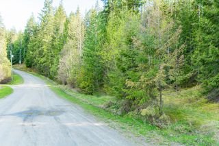 Photo 48: 3,4,6 Armstrong Road in Eagle Bay: Vacant Land for sale : MLS®# 10133907