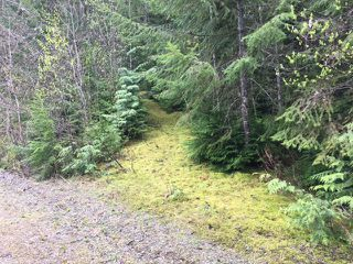 Photo 41: 3,4,6 Armstrong Road in Eagle Bay: Vacant Land for sale : MLS®# 10133907
