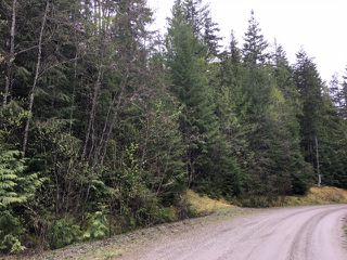 Photo 40: 3,4,6 Armstrong Road in Eagle Bay: Vacant Land for sale : MLS®# 10133907