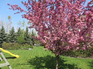 Photo 37: 355 Laurel Bay Southeast: Oakbank Single Family Detached for sale (R04)  : MLS®# 1811153