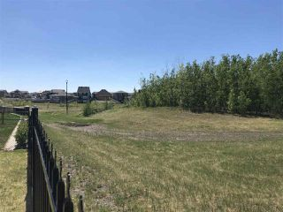 Photo 28: 4314 VETERANS Way in Edmonton: Griesbach House for sale