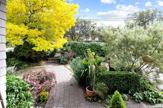 Photo 6: 2728 Blackwood St in : Vi Hillside House for sale (Victoria)  : MLS®# 854760