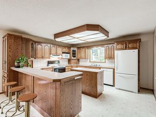 Photo 12: 4907 46 Street: Innisfail Detached for sale : MLS®# A1040928