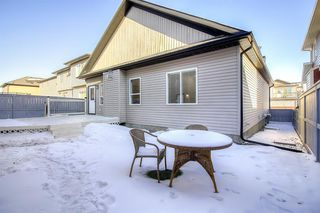 Photo 38: 953 Channelside Road SW: Airdrie Detached for sale : MLS®# A1048432