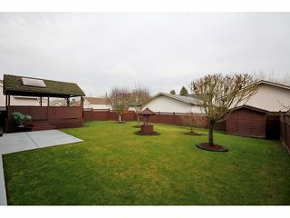 """Photo 9: 4616 223A Street in Langley: Murrayville House for sale in """"Upper Murrayville"""" : MLS®# F1302448"""