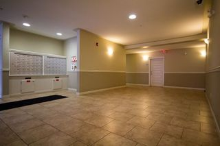 Photo 17:  in Edmonton: Pleasantview Condo for sale