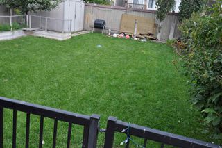 Photo 15: 15137 43 Street in Edmonton: Zone 02 House for sale : MLS®# E4170867