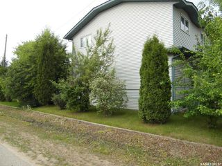 Photo 48: 236 Iris Bay in Spiritwood: Residential for sale : MLS®# SK805192