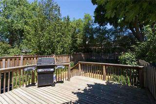 Photo 5: 59 Coleridge Ave in Toronto: Woodbine-Lumsden Freehold for sale (Toronto E03)  : MLS®# E3543004