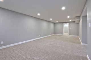 Photo 20: 3839 108 ST NW in Edmonton: Zone 16 House for sale : MLS®# E4129936