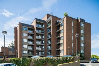 Photo 18: 702 103 E Gorge Rd in Victoria: Vi Burnside Condo Apartment for sale : MLS®# 842826