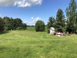 Photo 13: 463042 RGE RD 245: Rural Wetaskiwin County House for sale : MLS®# E4208174