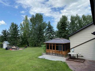 Photo 42: 463042 RGE RD 245: Rural Wetaskiwin County House for sale : MLS®# E4208174