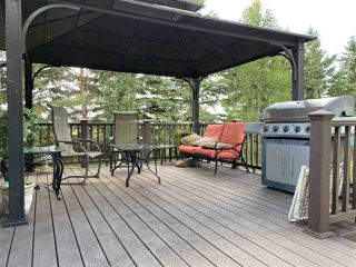Photo 41: 463042 RGE RD 245: Rural Wetaskiwin County House for sale : MLS®# E4208174