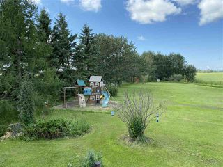 Photo 43: 463042 RGE RD 245: Rural Wetaskiwin County House for sale : MLS®# E4208174