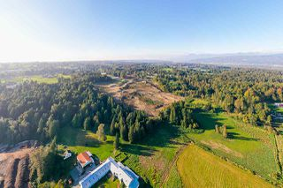 Photo 6: 31050 HARRIS Road in Abbotsford: Bradner House for sale : MLS®# R2505223