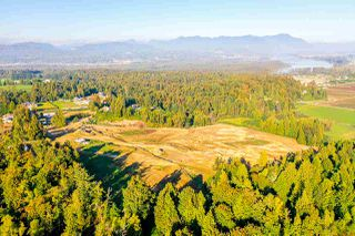 Photo 3: 31050 HARRIS Road in Abbotsford: Bradner House for sale : MLS®# R2505223