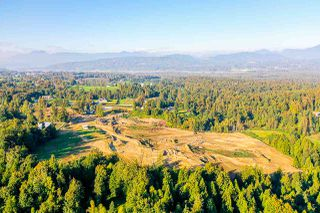 Photo 8: 31050 HARRIS Road in Abbotsford: Bradner House for sale : MLS®# R2505223