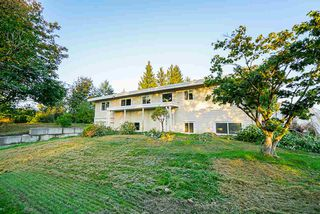 Photo 5: 31050 HARRIS Road in Abbotsford: Bradner House for sale : MLS®# R2505223