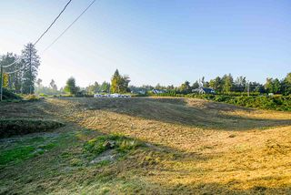 Photo 25: 31050 HARRIS Road in Abbotsford: Bradner House for sale : MLS®# R2505223