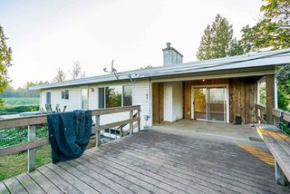 Photo 20: 31050 HARRIS Road in Abbotsford: Bradner House for sale : MLS®# R2505223