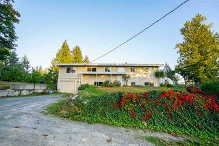 Photo 1: 31050 HARRIS Road in Abbotsford: Bradner House for sale : MLS®# R2505223