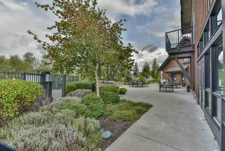 """Photo 38: 55 31098 WESTRIDGE Place in Abbotsford: Abbotsford West Townhouse for sale in """"Hartwell"""" : MLS®# R2511908"""