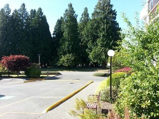 "Photo 8: # 209 33490 COTTAGE LN in Abbotsford: Central Abbotsford Condo for sale in ""Cottage Lane"""