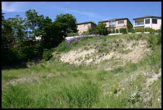 Photo 21: 1351 Northeast 10 Avenue in Salmon Arm: NE Salmon Arm Vacant Land for sale : MLS®# 10098930
