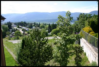 Photo 3: 1351 Northeast 10 Avenue in Salmon Arm: NE Salmon Arm Vacant Land for sale : MLS®# 10098930