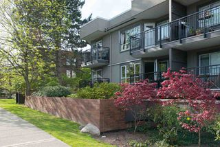 Photo 19: 110 555 W 14TH AVENUE in Vancouver: Fairview VW Condo for sale (Vancouver West)  : MLS®# R2059901
