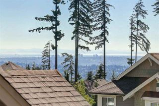 Photo 15: 176 SYCAMORE DRIVE in Port Moody: Heritage Woods PM House for sale : MLS®# R2095529