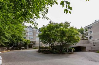 Photo 20: 310 3099 TERRAVISTA PLACE in Port Moody: Port Moody Centre Condo for sale : MLS®# R2072312
