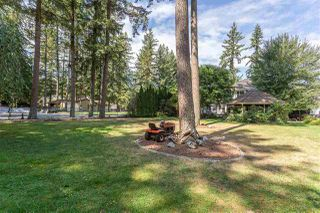 "Photo 18: 20260 28 Avenue in Langley: Brookswood Langley House for sale in ""BROOKSWOOD"" : MLS®# R2403878"