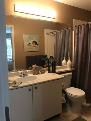 Photo 6: 24346 102B Avenue in Maple Ridge: Albion House for sale : MLS®# R2405429