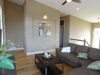 Photo 18: 381 MEADOWVIEW Drive: Fort Saskatchewan House for sale : MLS®# E4190188