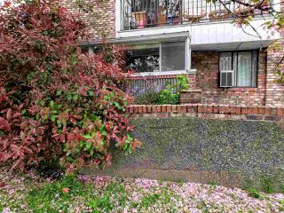 "Photo 3: 105 8770 LAUREL Street in Vancouver: Marpole Condo for sale in ""VILLA MARINE"" (Vancouver West)  : MLS®# R2458969"
