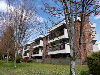 "Photo 1: 105 8770 LAUREL Street in Vancouver: Marpole Condo for sale in ""VILLA MARINE"" (Vancouver West)  : MLS®# R2458969"