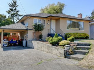 Photo 22: 3160 Aldridge St in : SE Camosun Single Family Detached for sale (Saanich East)  : MLS®# 845731