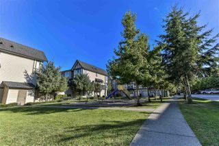 "Photo 29: 156 20875 80 Avenue in Langley: Willoughby Heights Townhouse for sale in ""Pepperwood"" : MLS®# R2493319"