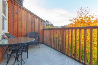 Photo 27: 156 Linden Ave in : Vi Fairfield West Half Duplex for sale (Victoria)  : MLS®# 858071