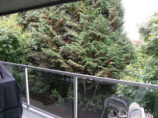 Photo 23: 313 11519 BURNETT Street in STANFORD GARDENS: Home for sale : MLS®# V1091143