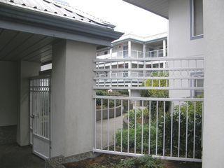 Photo 3: 313 11519 BURNETT Street in STANFORD GARDENS: Home for sale : MLS®# V1091143