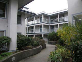 Photo 4: 313 11519 BURNETT Street in STANFORD GARDENS: Home for sale : MLS®# V1091143