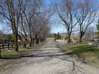 Photo 7: 293199 8th Line in Amaranth: Rural Amaranth Property for sale : MLS®# X4749676
