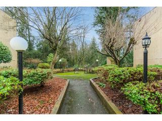 """Photo 34: 113 33400 BOURQUIN Place in Abbotsford: Central Abbotsford Condo for sale in """"Bakerview Place"""" : MLS®# R2523982"""