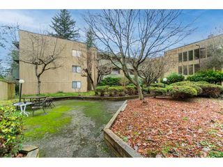 """Photo 33: 113 33400 BOURQUIN Place in Abbotsford: Central Abbotsford Condo for sale in """"Bakerview Place"""" : MLS®# R2523982"""